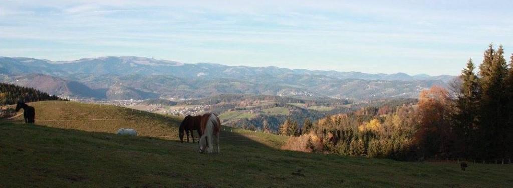 Die Ranch